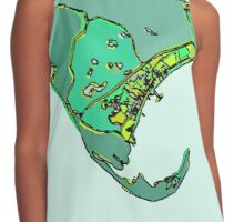 Abstract Map of Provincetown Contrast Tank