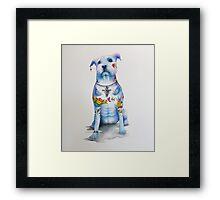 Pit Bull Tattoo Dog Framed Print