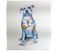 Pit Bull Tattoo Dog Poster