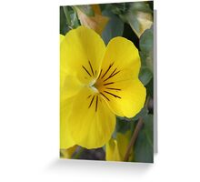 Small yellow flower Greeting Card