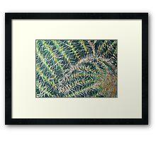 Cacti Acrylic Framed Print