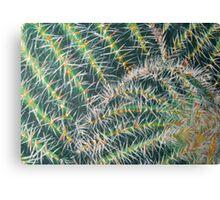 Cacti Acrylic Canvas Print