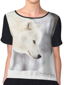 On The Prowl - Arctic Wolf Women's Chiffon Top