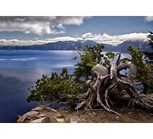 Trees on the Rim - Crater Lake National Park Photographic Print