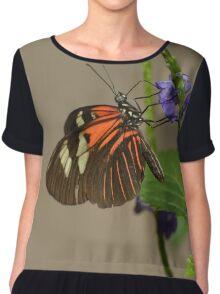 Common Cattleheart Butterfly Chiffon Top