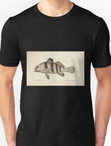 Natural History Fish Histoire naturelle des poissons Georges V1 V2 Cuvier 1849 140 Unisex T-Shirt