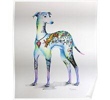Italian Greyhound Tattoo Dog Poster