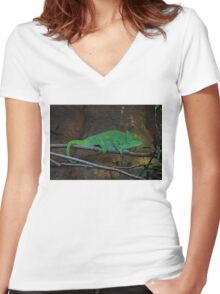 Parson's Chameleon Women's Fitted V-Neck T-Shirt