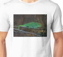 Parson's Chameleon Unisex T-Shirt