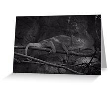 Parson's Chameleon Greeting Card