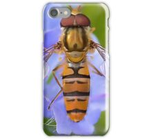 Hoverfly Wings  [ PVL ] iPhone Case/Skin