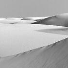 A dozen dunes by Linda Sparks