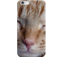 relaxing cat iPhone Case/Skin