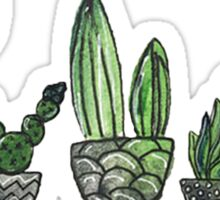 Watercolor Cacti Set Sticker
