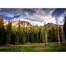 Meadow Above the Basin - Great Basin National Park Photographic Print
