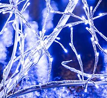 Winter Wonderland - Lights, Frozen, Water, Ice #1  by Fotopia
