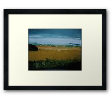 Sunflowers of the Darling Downs  Framed Print