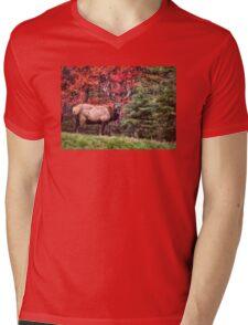 Elk Country Autumn Mens V-Neck T-Shirt