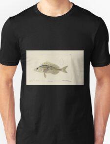 Natural History Fish Histoire naturelle des poissons Georges V1 V2 Cuvier 1849 080 Unisex T-Shirt