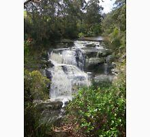 Beautiful Agnes Falls, South Gippsland (Australia) Unisex T-Shirt