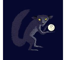 Aye Aye Steals the Moon Photographic Print