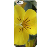 Small yellow flower iPhone Case/Skin