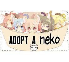 Adopt a Neko Photographic Print