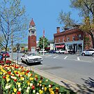 Niagara On The Lake  by Lanis Rossi