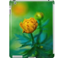 Trollius europaeus. Flowering globe flowers.  The Bush of the globe on the background of forest meadows covered with flowers. iPad Case/Skin