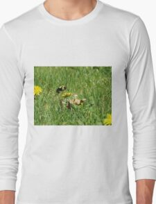 Bumble Bee Flying to Flower Long Sleeve T-Shirt