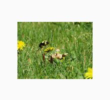 Bumble Bee Flying to Flower Unisex T-Shirt