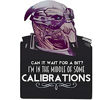 Garrus Calibration Photographic Print