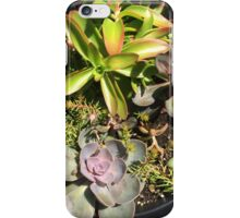 Floral series 11 iPhone Case/Skin