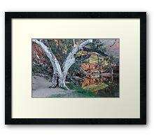 Majestic Eucalypt Framed Print
