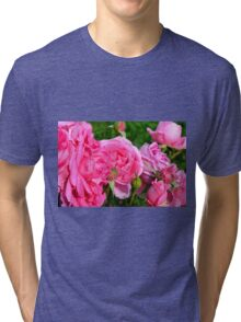 Pink roses in the garden. Tri-blend T-Shirt