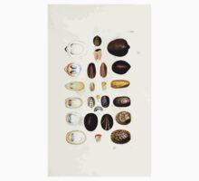 Thesaurus conchyliorum Monographs of genera of shells George Brettingham Sowerby 1887 V1-V5 120 Kids Tee