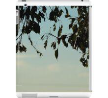 More To Explore iPad Case/Skin