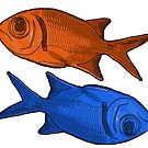 Fish Orange Blue by Colin Bentham