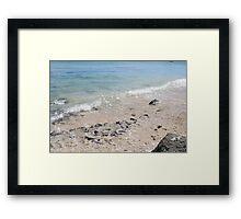 Coral Shores Framed Print
