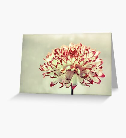Hold onto the Light Greeting Card