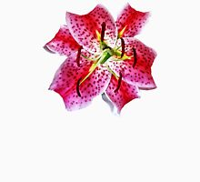 Stargazer Lily Closeup Womens Fitted T-Shirt