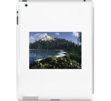 Balmuda Cove iPad Case/Skin