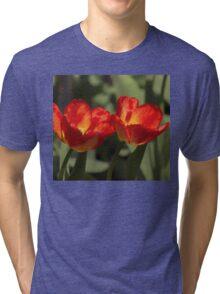 Fiery Tulips Tri-blend T-Shirt