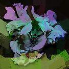 Modern Tulip by CarolM