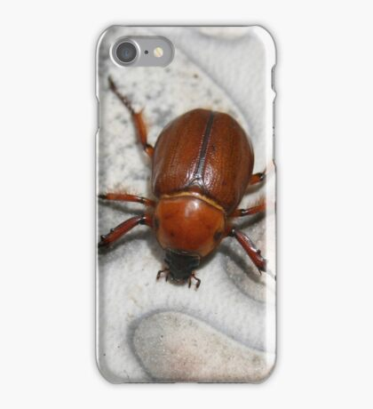 Beetle on Concrete iPhone Case/Skin