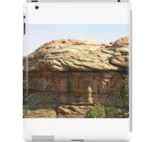 Canyonlands 11 iPad Case/Skin