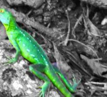 Colorized Lizard Sticker