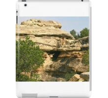 Canyonlands 19 iPad Case/Skin