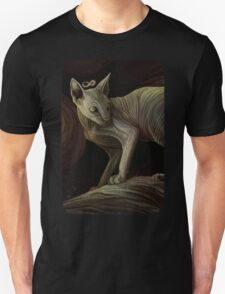 Naked knowledge Unisex T-Shirt