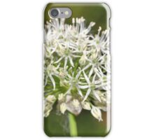 White Allium iPhone Case/Skin